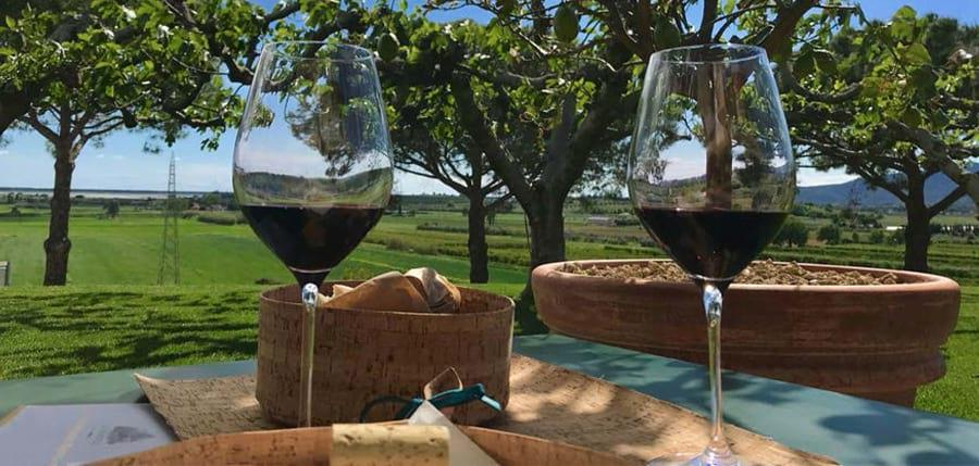 food and wine in tuscany